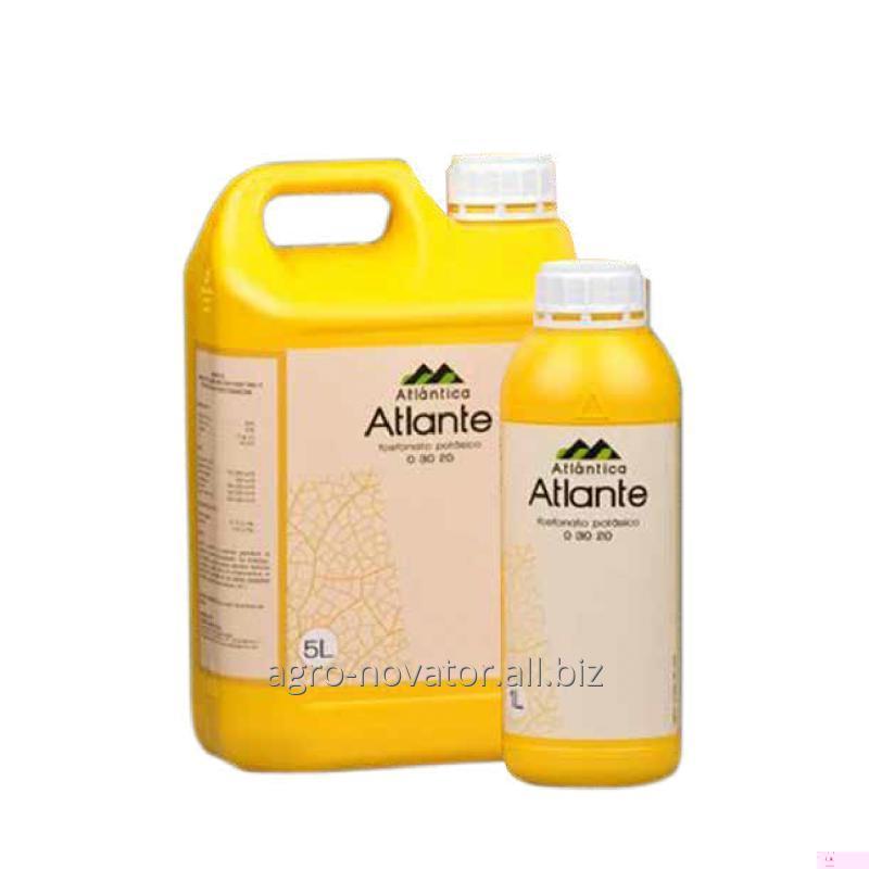 Купить Атланте фосфорно-калийное, 5л.