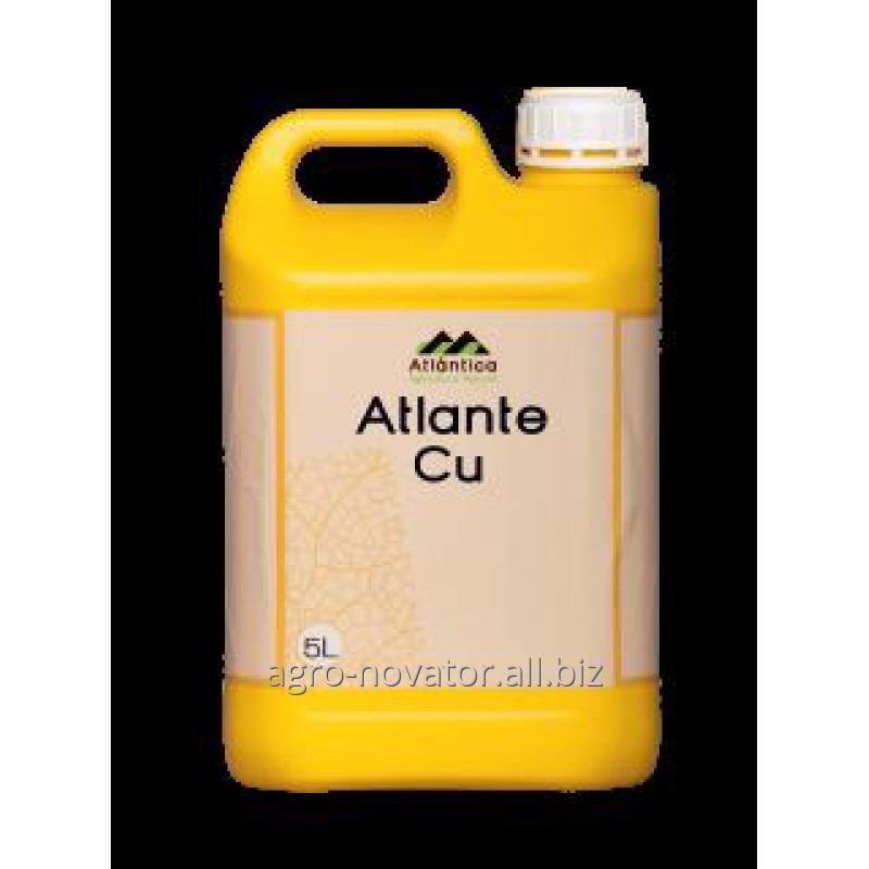Купить  Атланте Медь Cu 5л.