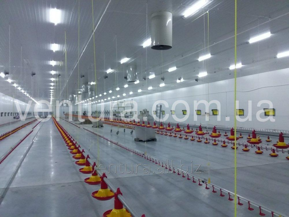 Buy Heating for a poultry farm, heating a poultry house