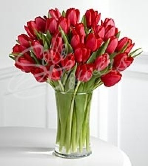 d2874ee9287d4a Тюльпани взимку . Букети квітів в асортиментах купити в Одеса