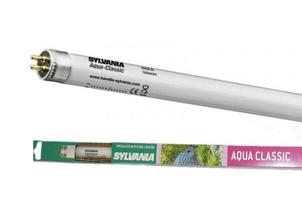 Лампа для аквариумов Sylvania FHO 24W/549мм Aquaclassic G5
