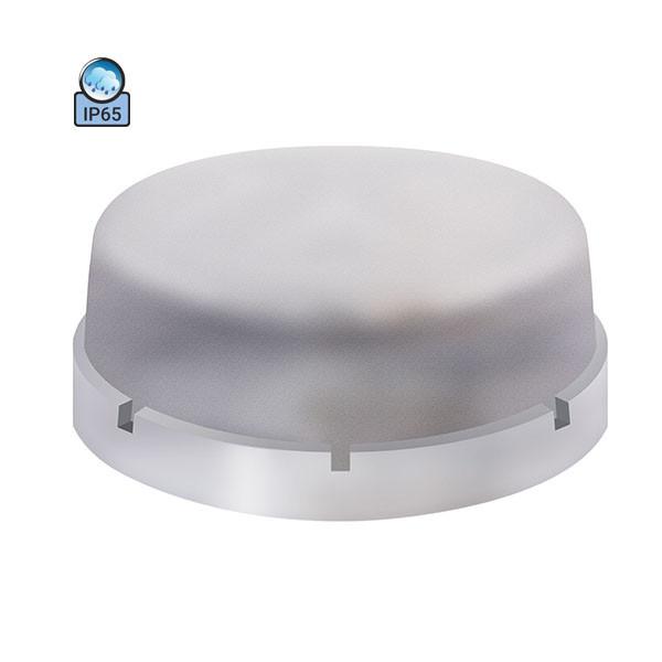 Светильник потолочный ERKA 1065-P IP65 прозрачный/прозрачный