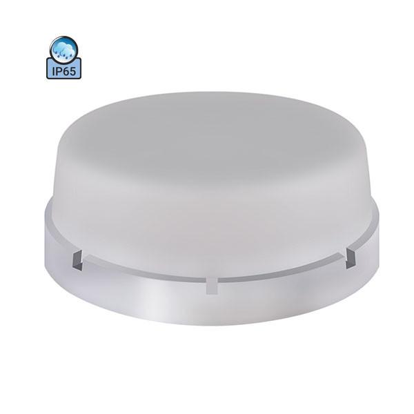 Светильник потолочный ERKA 1065-PB IP65 матовый/прозрачный