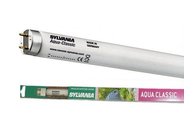 Лампа для аквариумов Sylvania F 18W/590мм Aquaclassic G13