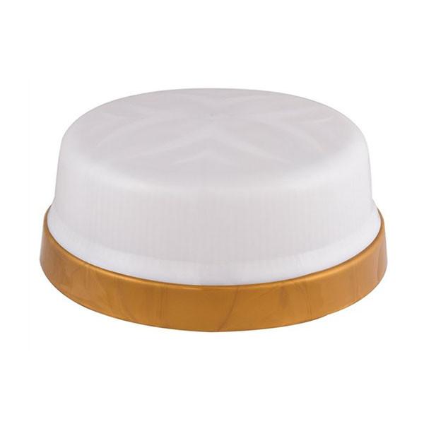 Светильник потолочный ERKA 1102 LED-GB 12W 4200 К матовый/золото