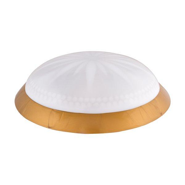 Светильник потолочный ERKA 1149 LED-GB 24W 4200 К матовый/золото