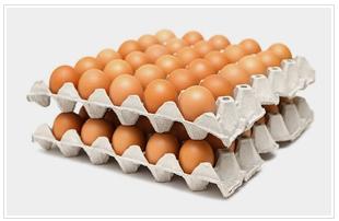 Купить Яйца