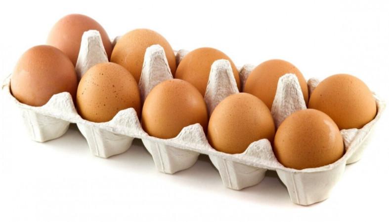 Купить Яйцо категория СО