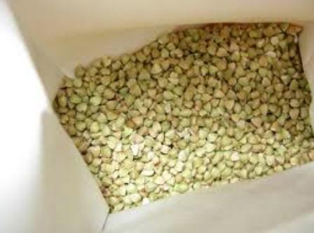 Купить Гречка зеленая (белая) оптом