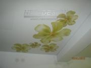 Купити Натяжні стелі з малюнком Вінниця,замовити,установка,ціна