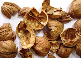 Скорлупа ореха грецкого. Украина, купить, цена.