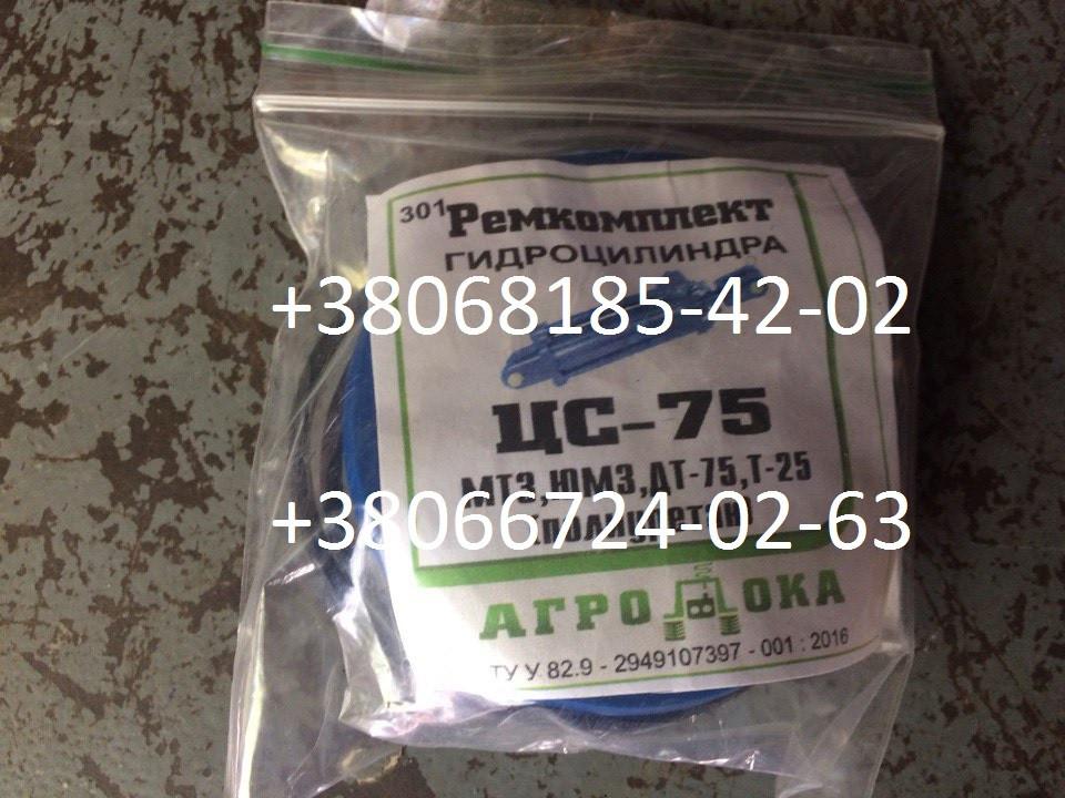 Купить Ремкомплект гидроцилиндра ЦС-75 (МТЗ, ЮМЗ, ДТ-75, Т-25)