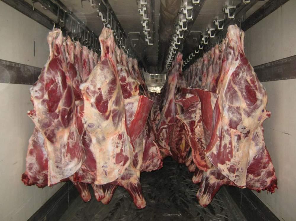 Купить Мясо охлажденное говядина туши, полутуши, четверти