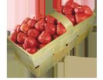 Купить Корзинка для ягод 500г, купить в Іване Пусте, Тернопільська обл, заказать, не дорого