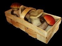 Купить Корзинка для грибов 250г, Тара для ягод, ЧП, купить, цена, Украина