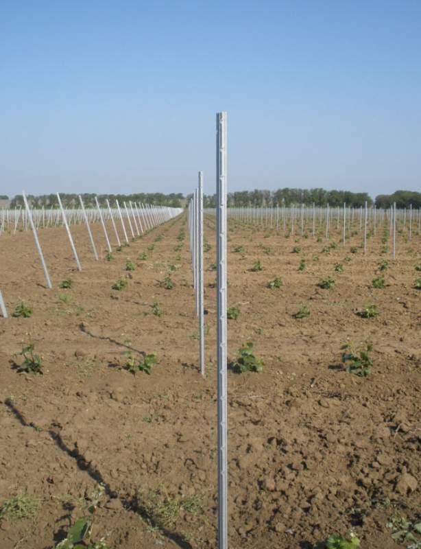 Опора для виноградников