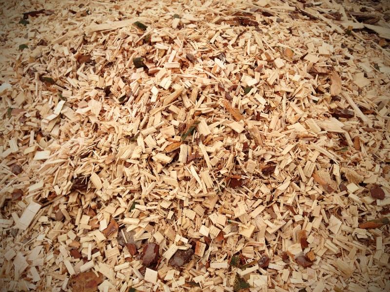 Купить Щепа топливная, хвойная, производим щепу из хвойных пород древесины, щепа топливная цена, топливная щепа от приоизводителя в Украине.