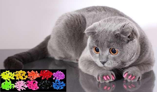 Купить Нецарапки для кошек и собак.Мягкие коготки.Антицарапки для кошек