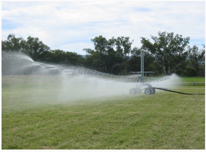 Buy Cars irrigating Ukrainian and foreign producers