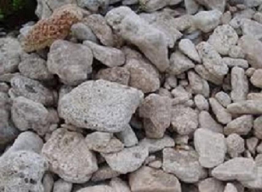 Купить Сыпучие строительные материалы - известняк