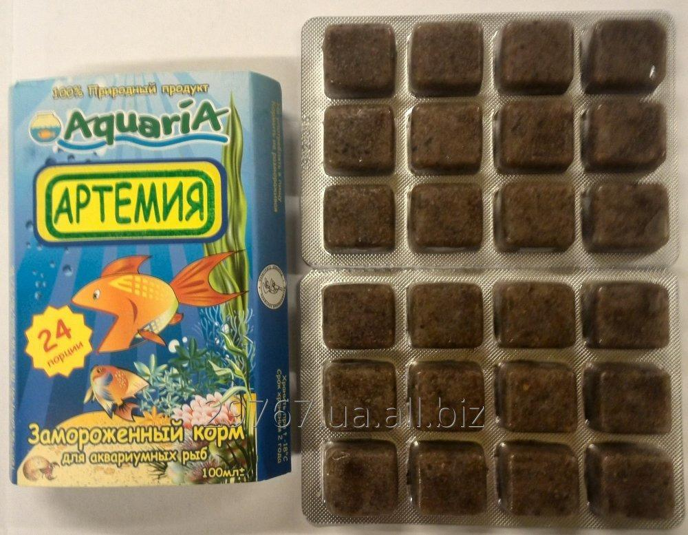 Приготовление корма для аквариумных рыб в домашних условиях