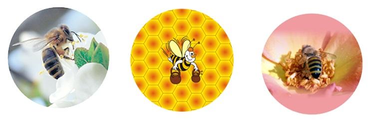 Крышки для производителей и продавцов медовой продукции