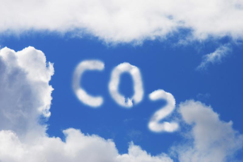 Сополимеризация двуокиси углерода