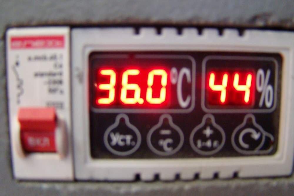 Инкубатор НИКА шестилотковый на 900 яиц