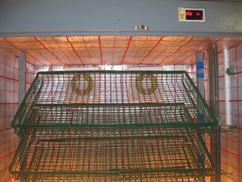 Десятилотковый на 1500 яиц автоматический инкубатор бытовой НИКА