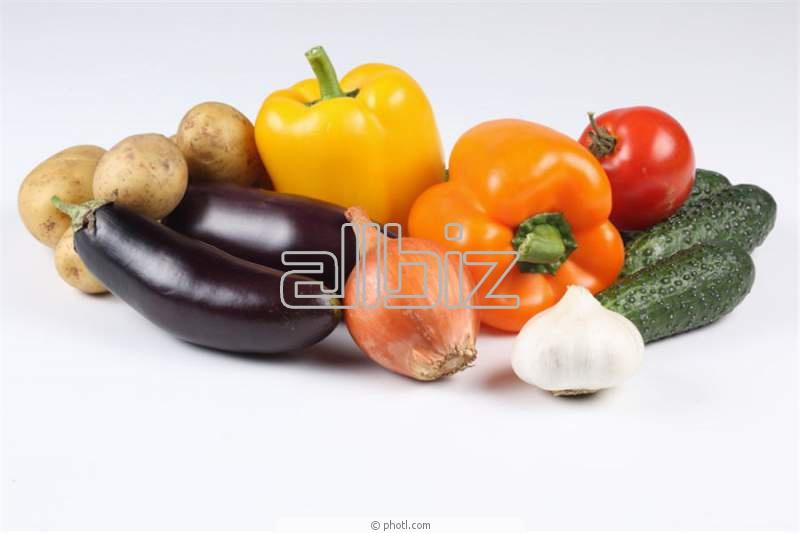 Купить Семена овощей в ассортименте продажа