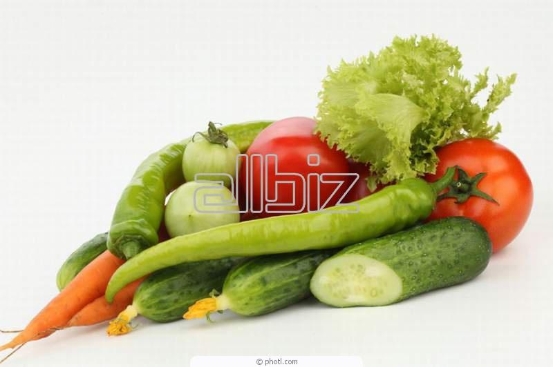Купить Семена для овощеводства