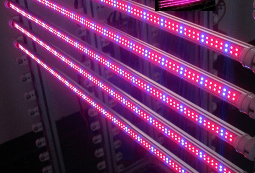 телефоны, купить фито светодиоды в новосибирске Кемеровская