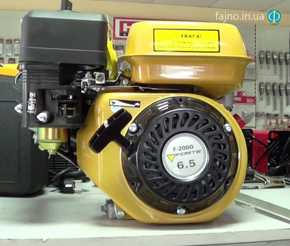 Бензиновый двигатель Forte