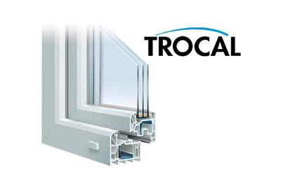 Двухкамерное дверь+окно Trocal купить в Киеве