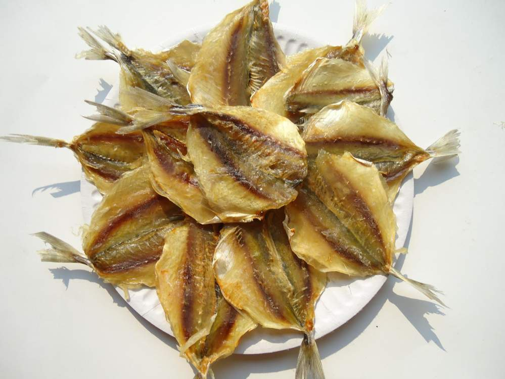 Сушеная рыба оптом сушеная рыба, тунец, осьминог, янтарная, кальмары