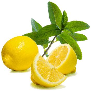 Comprar El aromatizador el Limón laym