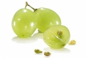 Comprar Extracto de semilla de uva 95%
