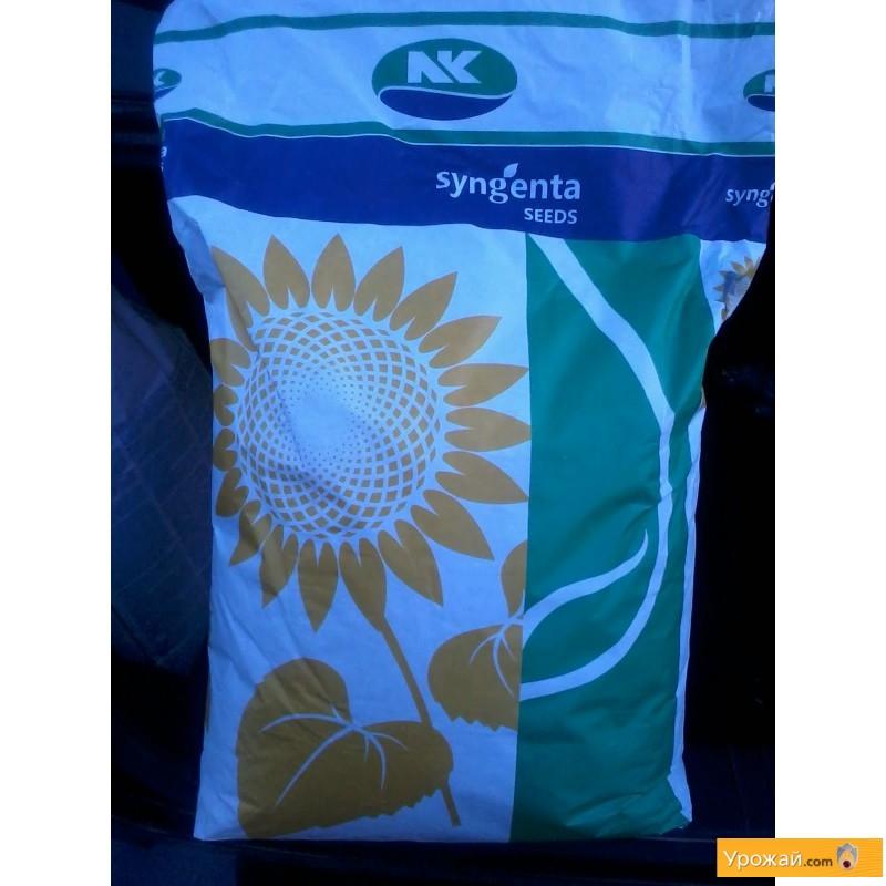 Купити Семена соняшника Сингента