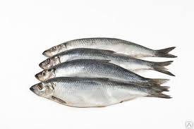 Купить Мелекинский рыбоконсервный цех