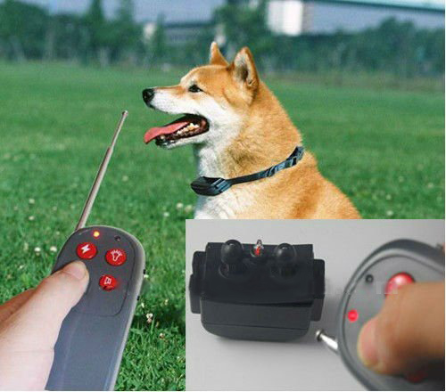 Buy Multipurpose (4 in 1) an electronic collar for training and training of a sob