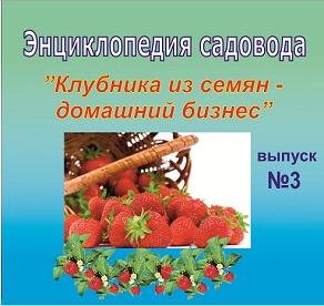 Купить Клубника из семян - домашний бизнес