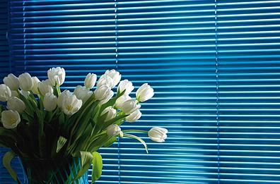 Buy Horizontal blinds