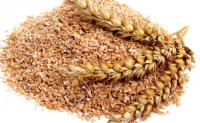 Wheat bran is good forage for all animal species.