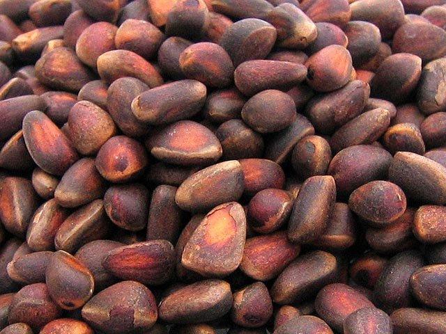Купити Кедровий горіх
