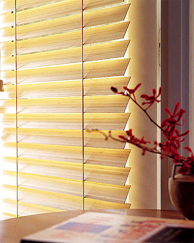 Buy Blinds aluminum horizontal 25 mm. (Germany)