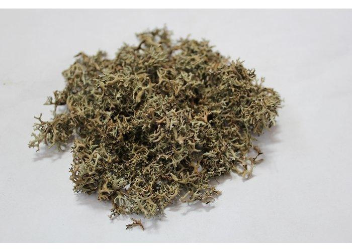 Исландский мох или цетрария исландская,100г