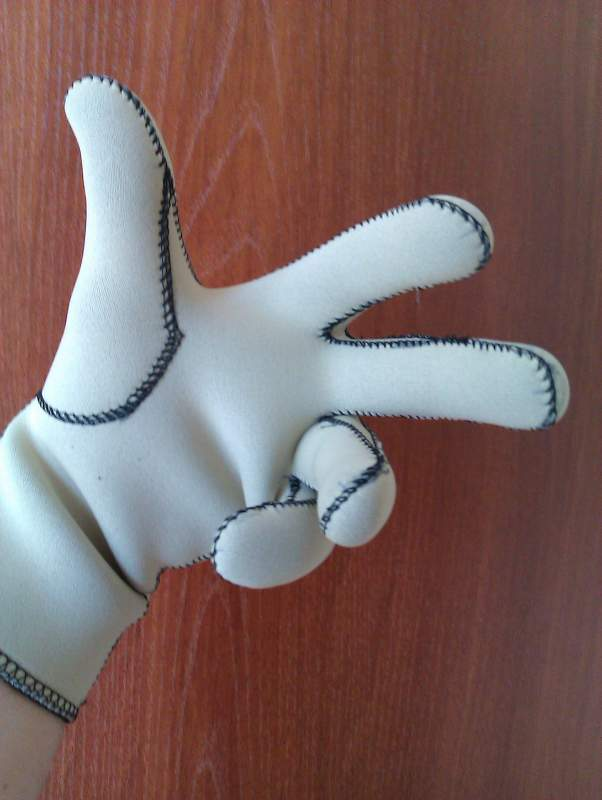 Buy Gloves for wash of the machine