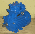 The explosion-proof motor for the gas industry of AIMM 100 L2 (5.5 kW. 3000 RPM.)