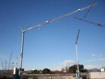 Buy Tower crane OMV 300 (3-4 T, ARROW of 36 M)