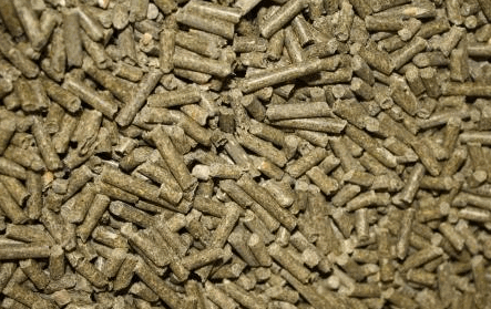 Купить Отруби гранулированные